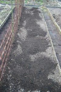 Peultjes - bed met compost