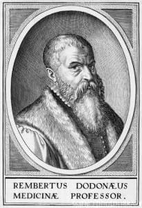 Rembert Dodoens, Flemish botanist