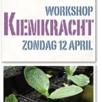 Coaching workshop KiemKracht