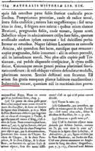 Zeekool - Plinius 1 - 303x482.jpg