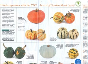 RHS The Garden Squashes 1 - groot