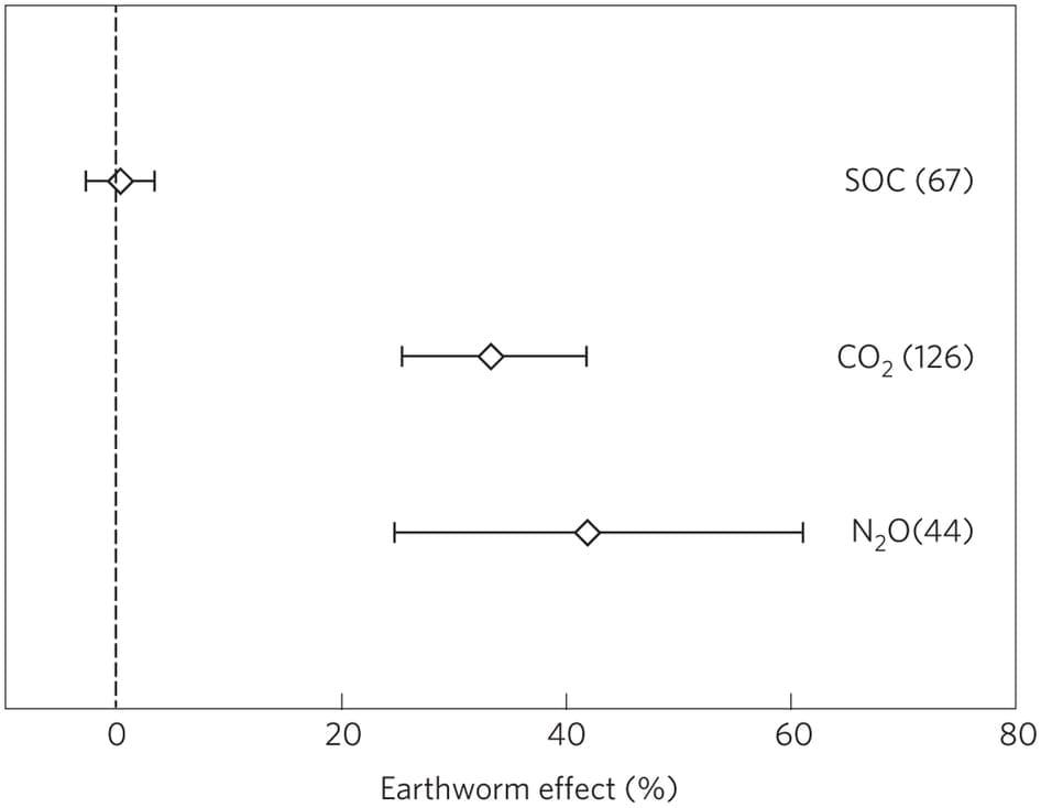 Wormen produceren broeikasgassen - earth worm effect
