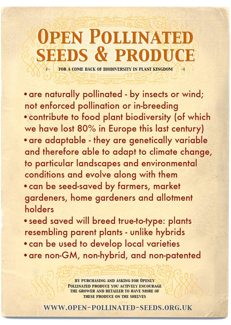 Open Pollinated Seeds - poster print
