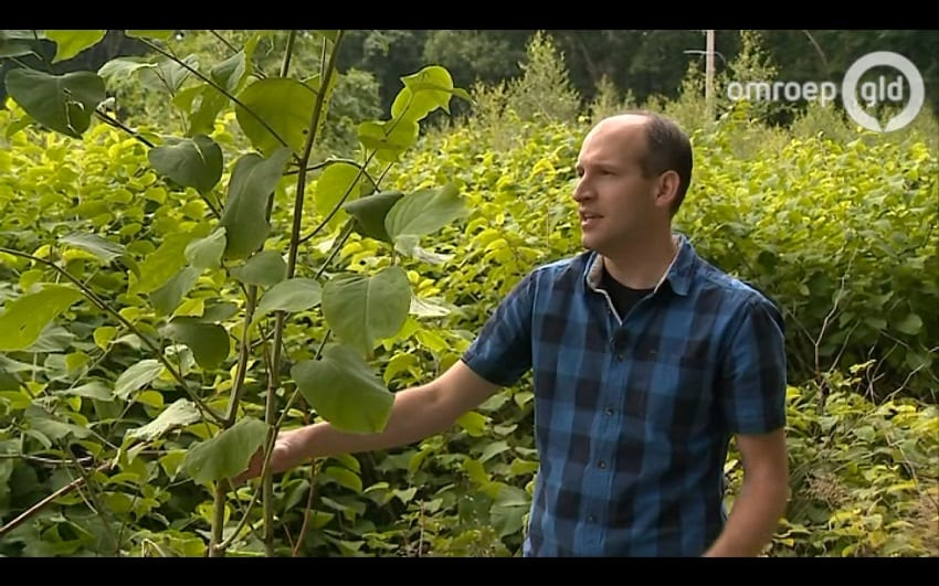 Wie on tie-vie 5 6 TV Gelderland Jan Oldenburger