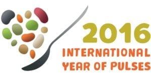 Het Jaar van de - boon FAO 2