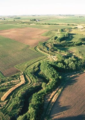 Multiple rows of trees and shrubs, as well as a native grass strip, combine in a riparian buffer to protect Bear Creek in Story County, Iowa. The buffer, on the Ron Risdal and Lonnie Strum farms, is a nationally designated demonstration area for riparian buffers.